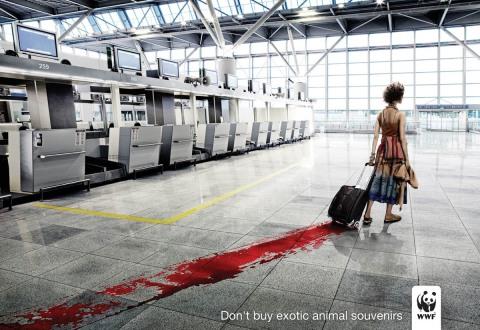 in WWF-Kampagne