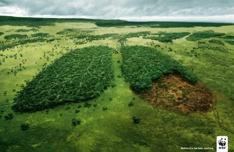 WWF Kampagnenmotiv